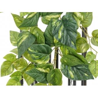 EUROPALMS Pothos bush garland, 90cm