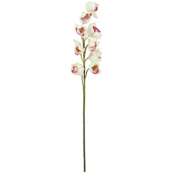 EUROPALMS Cymbidium spray, white-pink, 90cm