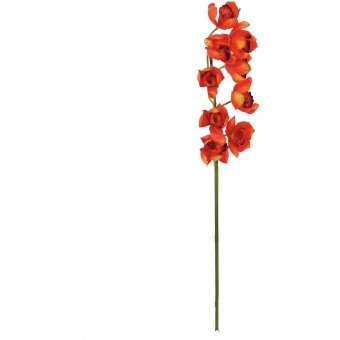 EUROPALMS Cymbidium spray, red, 90cm