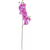 EUROPALMS Orchid spray, purple, 100cm