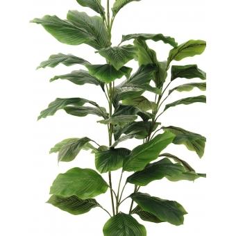 EUROPALMS Evergreen, 3 branches, 150cm #2