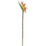 EUROPALMS Bird-of-paradise spray, orange, 95cm