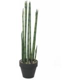 EUROPALMS Aloe Gigante (EVA), green, 80cm