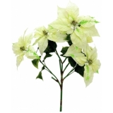 EUROPALMS Poinsettia bush, cream, 60cm
