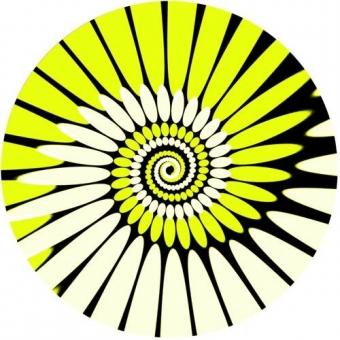 Zomo Slipmats Paint (Twin Pack) #2