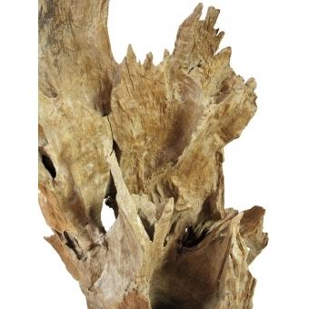 EUROPALMS Natural wood sculpture 60cm #9