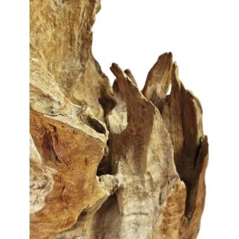 EUROPALMS Natural wood sculpture 60cm #10