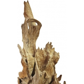 EUROPALMS Natural wood sculpture 160cm #7