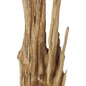 EUROPALMS Natural wood sculpture, slim 190cm #4