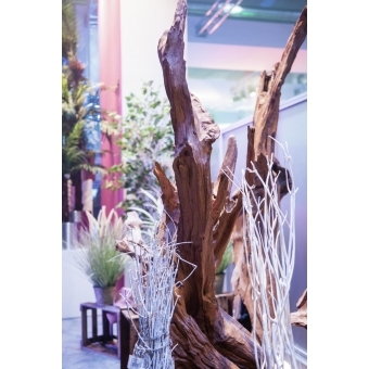 EUROPALMS Natural wood sculpture, slim 190cm #16
