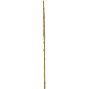 EUROPALMS Bamboo tube, Ø=3cm, 200cm