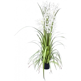 EUROPALMS Orchid grass, white, 140cm #3