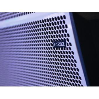 PSSO PRIME-315 Club Speaker System #6