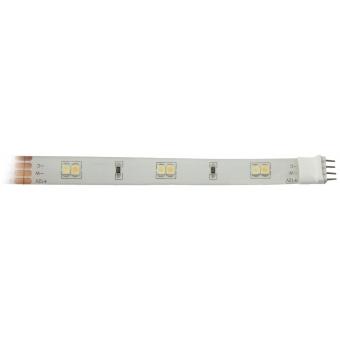 EUROLITE LED IP Strip 300 5m CW/WW 12V #2