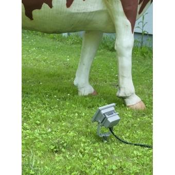 EUROLITE LED IP FL-10 COB RGB IR + Stake #4