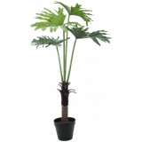 EUROPALMS Split Philo Plant, 120cm
