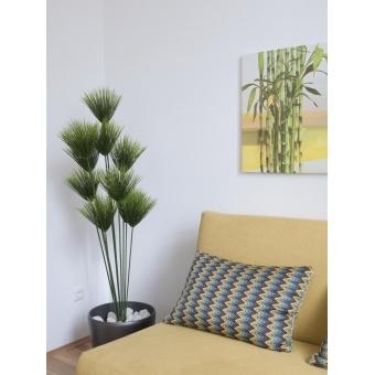 EUROPALMS Papyrus plant, 150cm #3