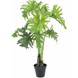 EUROPALMS Split Philo Plant, 90cm