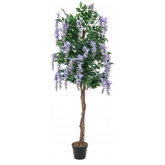 EUROPALMS Wisteria, purple, 150cm