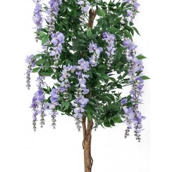 EUROPALMS Wisteria, purple, 150cm #2