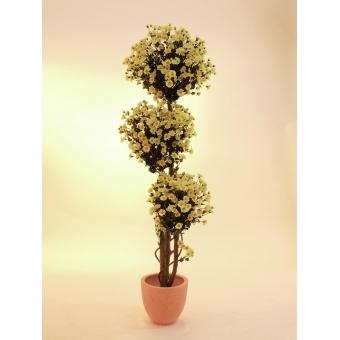 EUROPALMS Daisy tree, 160cm #2