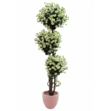 EUROPALMS Daisy tree, 160cm