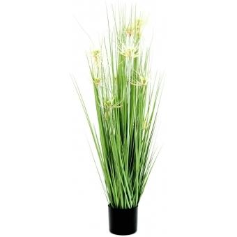 EUROPALMS Star grass, artificial, 105cm