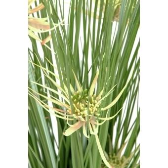 EUROPALMS Star grass, artificial, 105cm #2