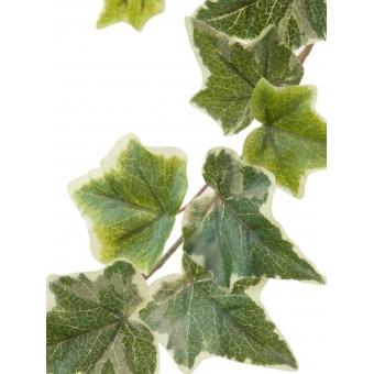 EUROPALMS Holland Ivy garland embossed 81cm #2