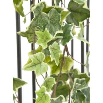 EUROPALMS Holland Ivy garland embossed 180cm #2