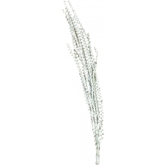 EUROPALMS Galho Buriti white 150cm