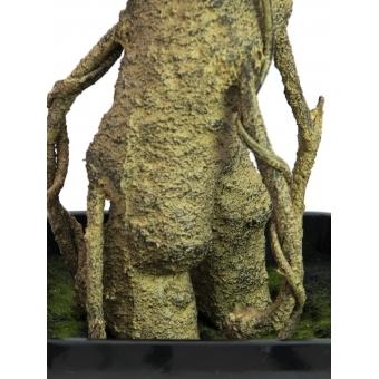 EUROPALMS Podocarpus tree, 150cm #3