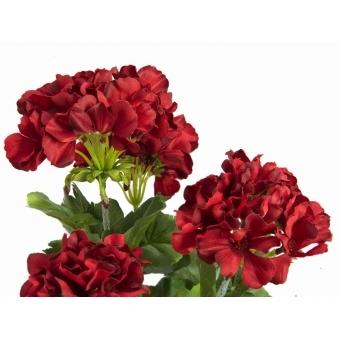 EUROPALMS Geranium red 42cm #2