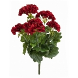 EUROPALMS Geranium red 42cm