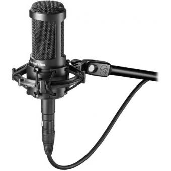 Microfon condenser Audio-Technica AT2050 #2