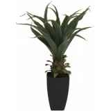 EUROPALMS Agave plant with pot, 75cm