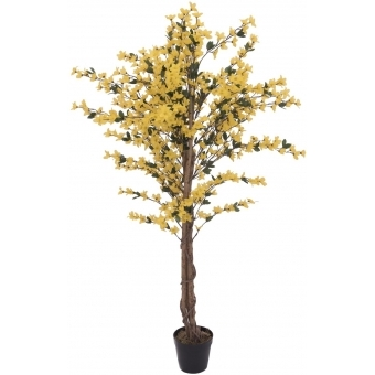 EUROPALMS Forsythia tree with 4 trunks, yellow, 150 cm