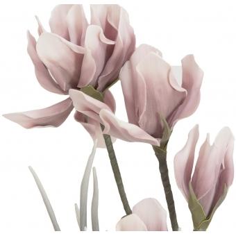 EUROPALMS Magnolia Branch (EVA), Pink #2