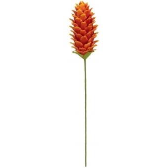 EUROPALMS Ginger Flower (EVA), Orange