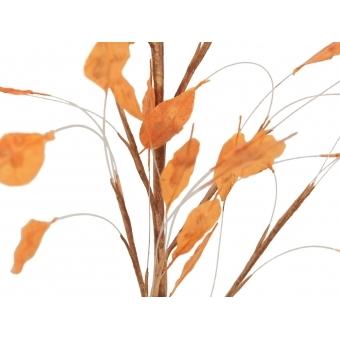 EUROPALMS Aronien Branch (EVA), orange #2