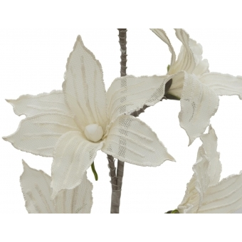 EUROPALMS Clematis Branch (EVA), white #2