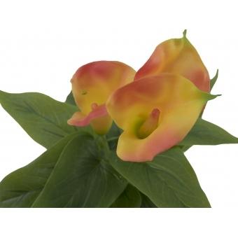 EUROPALMS Mini Calla, Yellow Orange, 43cm #2