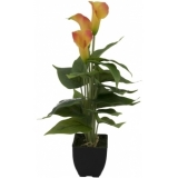 EUROPALMS Mini Calla, Yellow Orange, 43cm