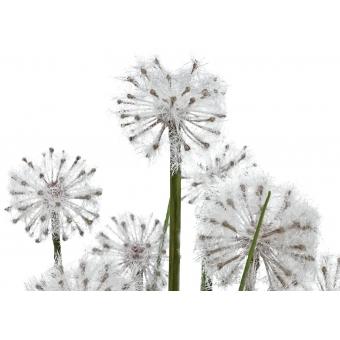 EUROPALMS Dandelion, artificial flower, 107cm #2