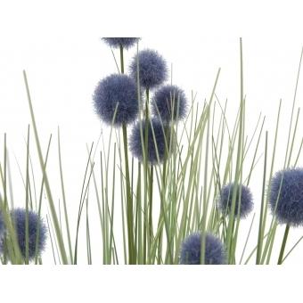 EUROPALMS Pompon Gras, 53cm, purple #2