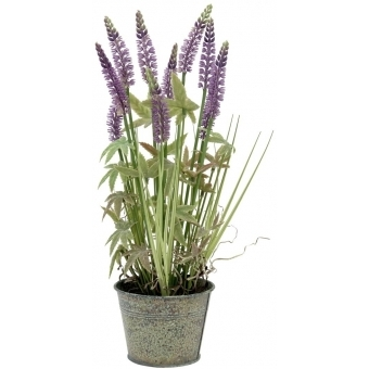 EUROPALMS Lavender grass, artificial, 46cm
