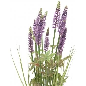 EUROPALMS Lavender grass, artificial, 46cm #4