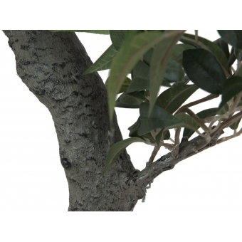 EUROPALMS Ficus Forest Tree, artificial plant, green, 80cm #2