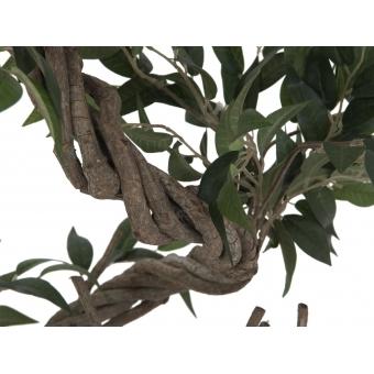 EUROPALMS Ficus multiple spiral trunk, artificial plant, green, #2