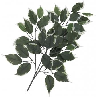 EUROPALMS Ficus spray, artificial, 12x #2